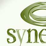 Synergy Learning Systems